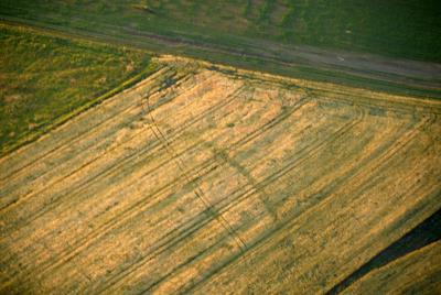 C-DL-200800155 - letfoto vegetačních příznaků