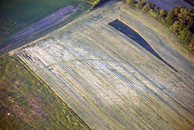 C-DL-200800156 - letfoto vegetačních příznaků