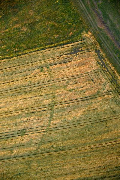 C-DL-200800158 - letfoto vegetačních příznaků
