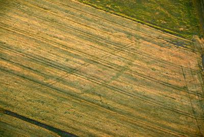 C-DL-200800160 - letfoto vegetačních příznaků