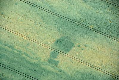 C-DL-201100335 - letfoto vegetačních příznaků