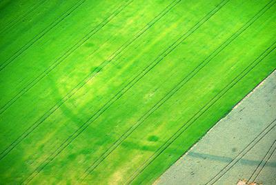 C-DL-201100337 - letfoto vegetačních příznaků