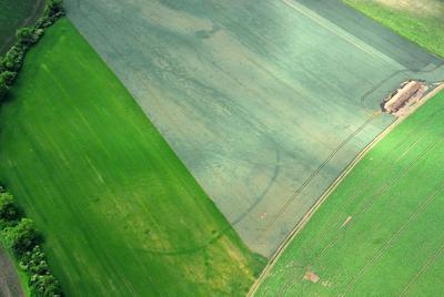 C-DL-201100342 - letfoto vegetačních příznaků