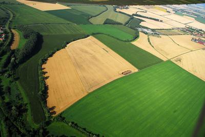 C-DL-201100343 - letfoto vegetačních příznaků