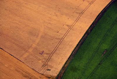 C-DL-201100344 - letfoto vegetačních příznaků