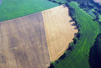 C-DL-201100345 - letfoto vegetačních příznaků