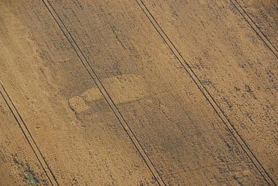 C-DL-201100346 - letfoto vegetačních příznaků
