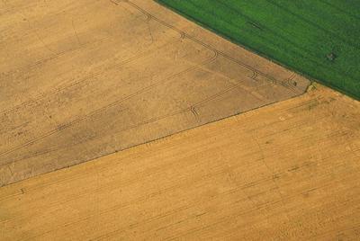 C-DL-201100348 - letfoto vegetačních příznaků