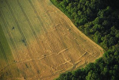 C-DL-201200048 - letfoto vegetačních příznaků