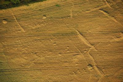 C-DL-201200051 - letfoto vegetačních příznaků