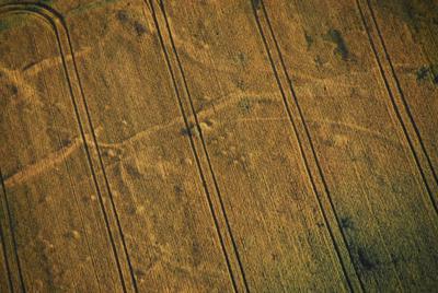 C-DL-201200054 - letfoto vegetačních příznaků