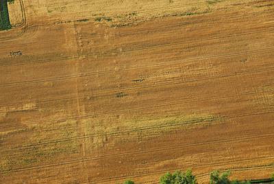 C-DL-201100234 - letfoto vegetačních příznaků