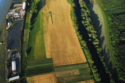 C-DL-201100235 - letfoto vegetačních příznaků