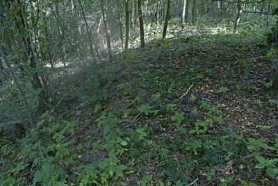 C-DT-100000836 - foto lokality