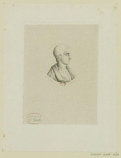 [Buste d'après l'antique, de profil] : [estampe] / Laguiche del. ; Prévost sculp.