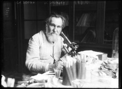 Professeur Metchnikoff [portrait du scientifique dans un laboratoire de recherche] : [photographie de presse] / [Agence Rol]