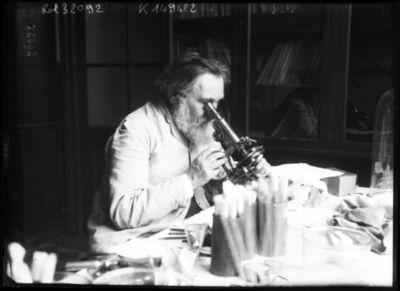 Professeur Metchnikoff [le scientifique travaillant au microscope] : [photographie de presse] / [Agence Rol]