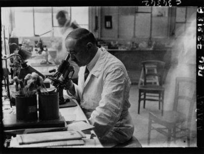 Hôpital St Louis : Docteur Millian regardant au microscope : [photographie de presse] / Agence Meurisse