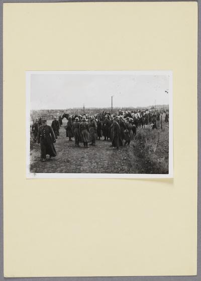 Polnische Kriegsgefangene nach Schlacht bei Kock