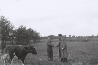 Jan Damen en zijn vrouw Dorke Klerkx emigreerden op 2 september 1947 samen met hun elf kinderen en de 87-jarige Hannes Klerkx, vader van Dorke, naar Canada. Hier verkoopt           Jan zijn (laatste?) koe.