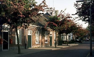 Straatbeeld met lage woningen met groene deuren en bloeiende bomen aan de Vliertstraat. Links net buiten beeld de viswinkel/stomerij van Bekkers. (Zie ook: 1923-005726 &           1923-004857)