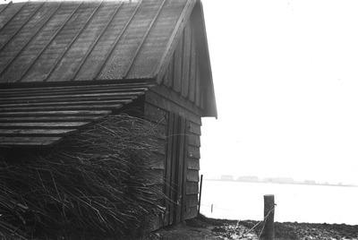 Hoogwater; Beersche Overlaat dreigt het land binnen te vallen. Aan het begin van der traverse staan schuren waarin het afweermateriaal is geborgen. Van die stapels rijshout           wordt vlechtwerk gemaakt om de dijken voor afbrokkeling te behouden.