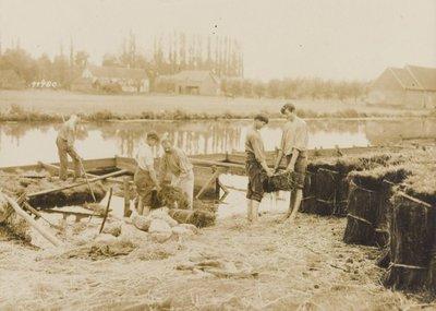 Enkele jongemannen leggen vlasschoven in het water van de Leie te bleken.