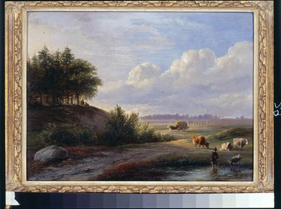 Landschap bij Westerbork