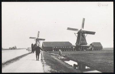 Zaandam-Oost. Links: Oliemolen De Strijd, bouwjaar 1686, afgebrand 22 februari 1949. Rechts: Oliemolen De Dood, bouwjaar 1681, door brand verwoest op 18 november 1915.