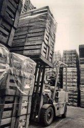 Het transport van nieuw gemaakte flessen bij N.V. Vereenigde Glasfabrieken.