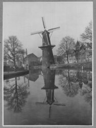 Molen de Walvisch aan de Westvest gezien vanaf de Kippenbrug in de richting van de Walvisstraat. Rechts van de molen, boven de huizen uit, de toren van de kerk van de           Nederlandse Protestanten Bond staande aan de Westvest.