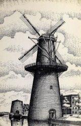 Getekende kaart. De Noordvest met molens De Noord en De Palmboom.