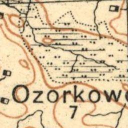 Mapa taktyczna Polski : pas 36, słup 29 : Rypin