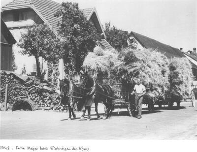 Einbringen des Korns durch Fritz Meyer