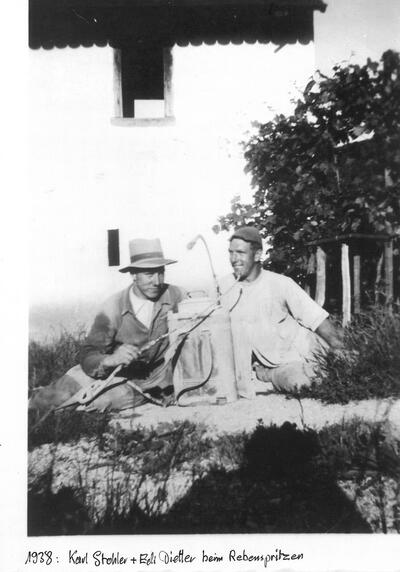 Karl Stohler und Edi Dietler beim Reben Spritzen