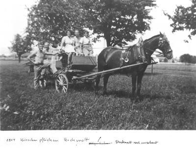 Beim Kirschenpflücken auf der Stockmatt um 1944