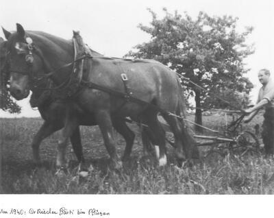 Rieder Bärti beim Pflügen um 1940
