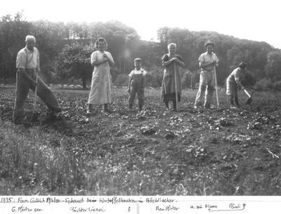 Fam. Gottlieb Pfirter-Schaub beim Kartoffelhacken