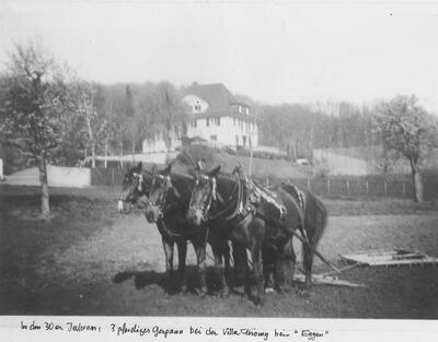 Eggen mit dem Dreiergespann um 1930 im Chästeli bei der Villa Thomy