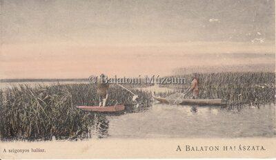A Balaton halászata. A szigonyos halász.