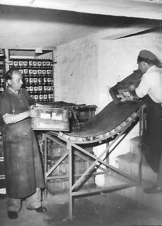 Fűszért raktár Nyíregyháza 1956