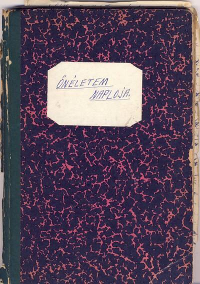 G. Dezső naplója