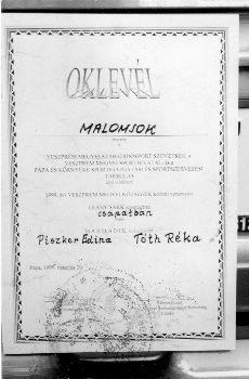 Színes fotó, Malomsok