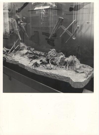 A Balatoni Múzeum 1967-es állandó kiállításának katalógusából