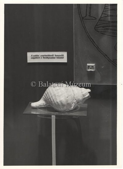 Balatoni Múzeum 1967-es állandó kiállításának katalógusa