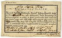 Himlőoltási felhívás és bizonyítvány, 1856-57