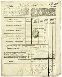 Baliczky Sándor kereskedő adóíve, Belváros, 1850
