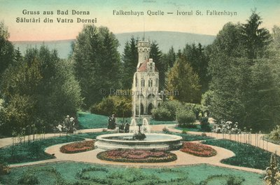 Gruss aus Bad Dorna - Sălutări din Vatra Dornei. Falkenhayn Quelle - Ivorul St. Falkenhayn