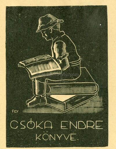 Csóka Endre könyve
