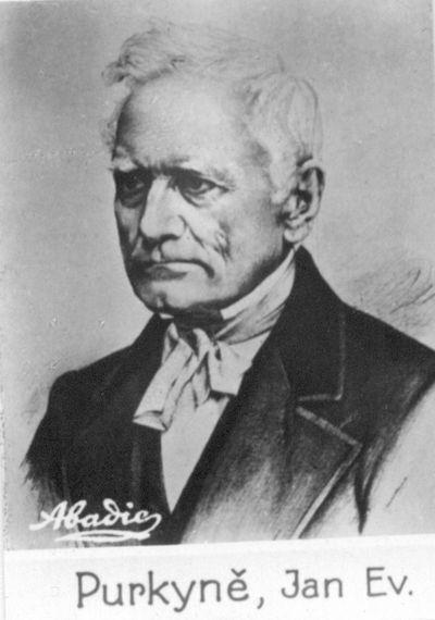 Johann Evangelist Purkinje (1787 –1869) cseh anatómus és fiziológus portréja